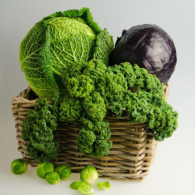 Altes Gemüse neu entdeckt in der therme~lounge